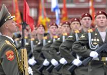 Управделами Президента разъяснил появление на Красной площади гигантской «зебры»