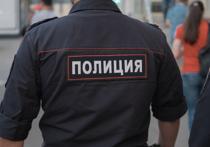Московским полицейским запретили играть в покемонов