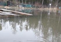 В Щелковском районе затопило целое кладбище